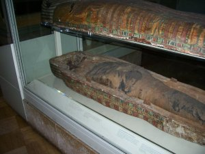 Including taking us to see this mummy at the ROM