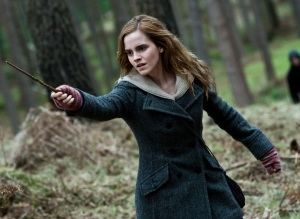 Hermione fighting